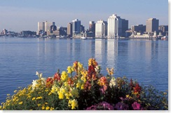 Halifax_skyline & flowers
